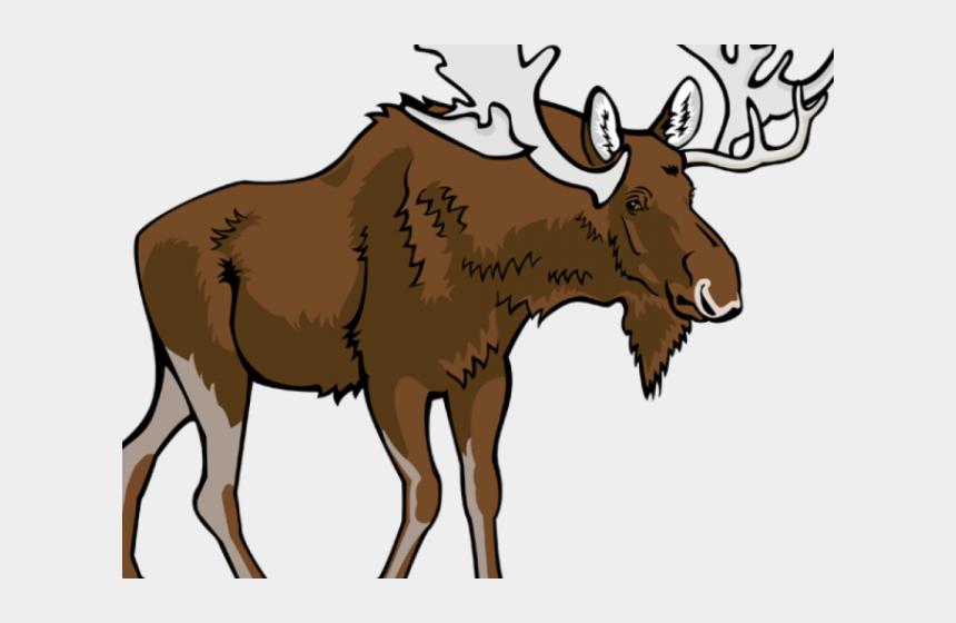 moose antler clipart, Cartoons - Moose Clipart Walking - Moose Png