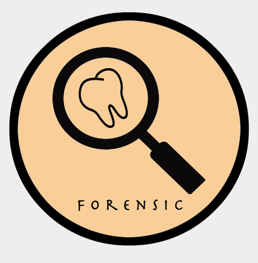 Forensic Dentistry Logo Forensic Odontology Cliparts Cartoons Jing Fm