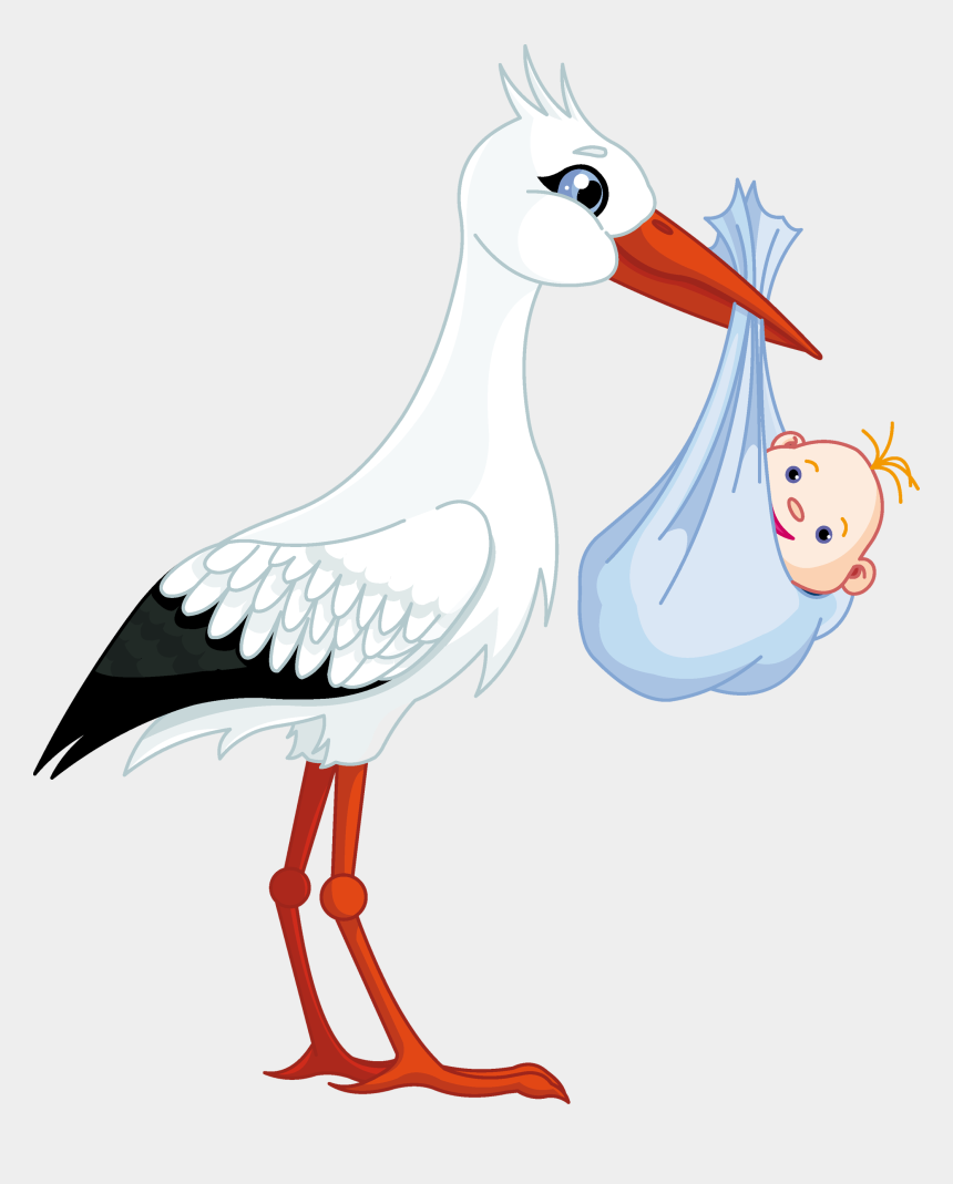 Stork Baby Png Stork Carrying Baby Boy Cliparts Cartoons Jing Fm
