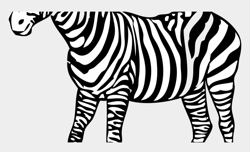 zebra head clipart black and white, Cartoons - Colouring Pic Of Zebra - Zebra Colouring