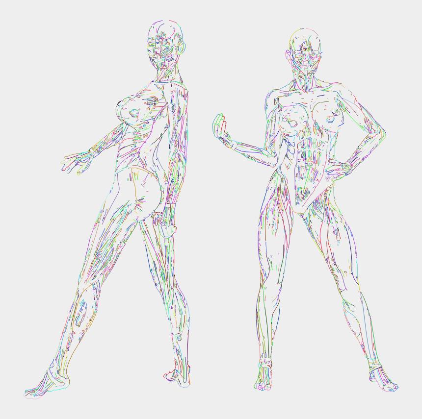 arm circles clipart, Cartoons - Muscular Women Line Art Prismatic No Bg - Illustration