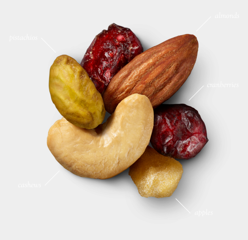 nuts clipart, Cartoons - Did U Know - Fruit And Nut Png