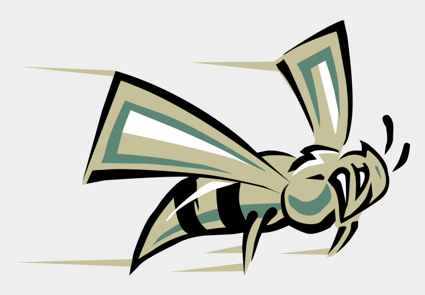 free hornet mascot clipart, Cartoons - Hornets Logo Png - California State University Sacramento Mascot