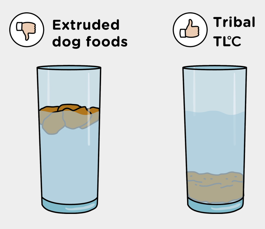 dog drinking water clipart, Cartoons - What Is Cold Pressed Dog Food - Alcoholic Beverage
