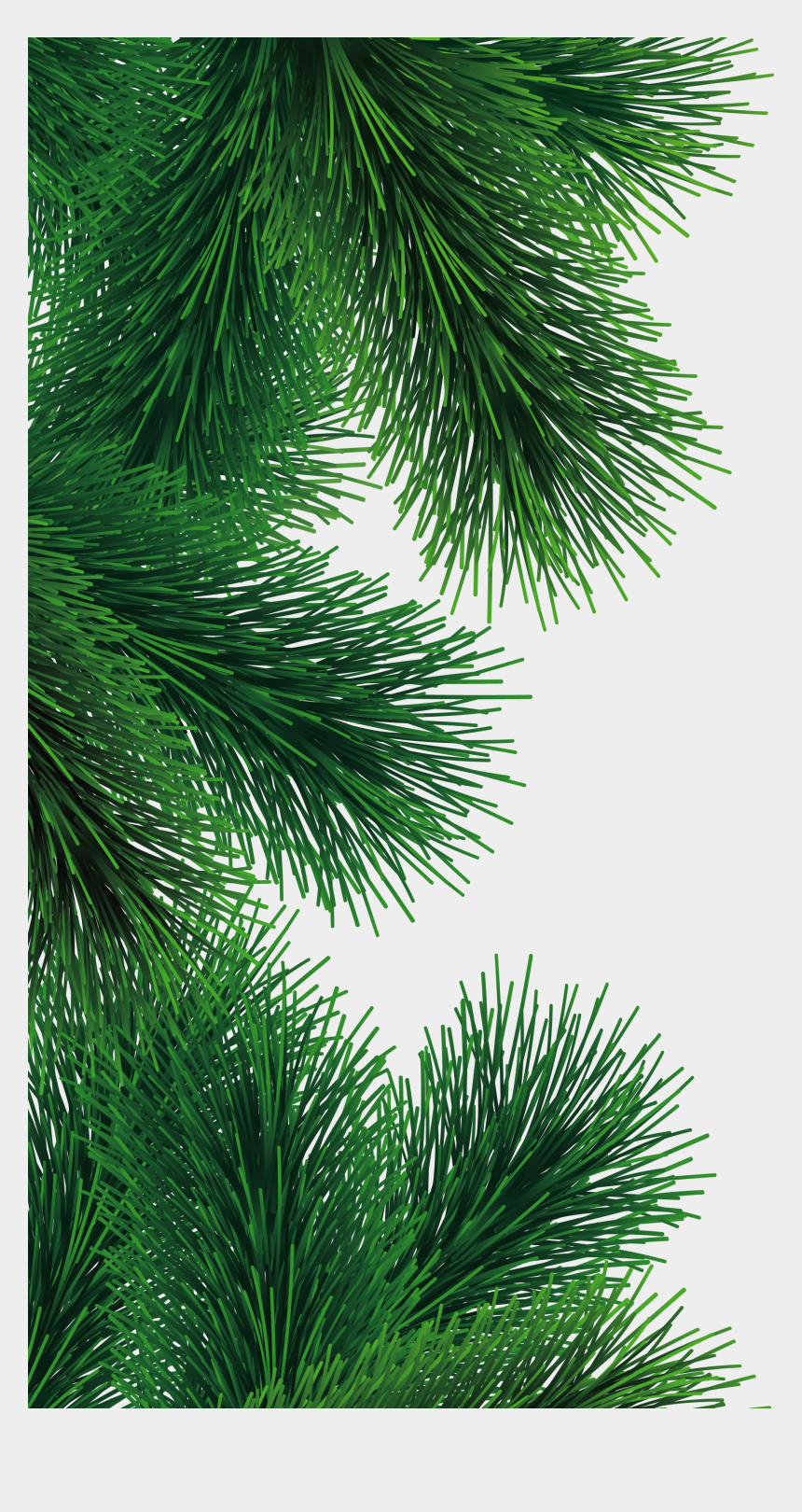 pine branches clipart, Cartoons - Fir-tree Branch Png Image - Fir Tree Branch Png