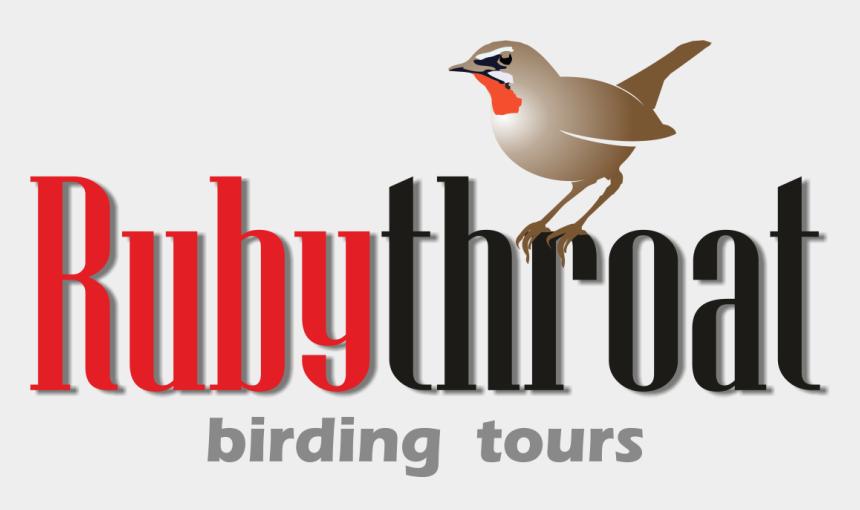 red headed woodpecker clipart, Cartoons - Main Menu - Old World Flycatcher