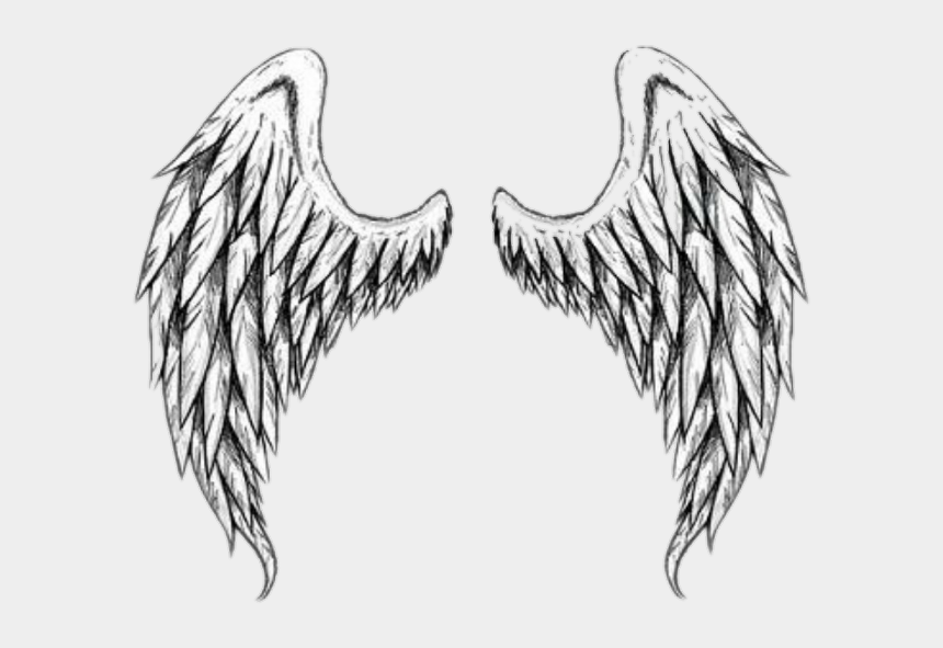 angle wings clipart, Cartoons - #بال #wing #wings #angle #freetoedit - Realistic Angel Wings Drawing