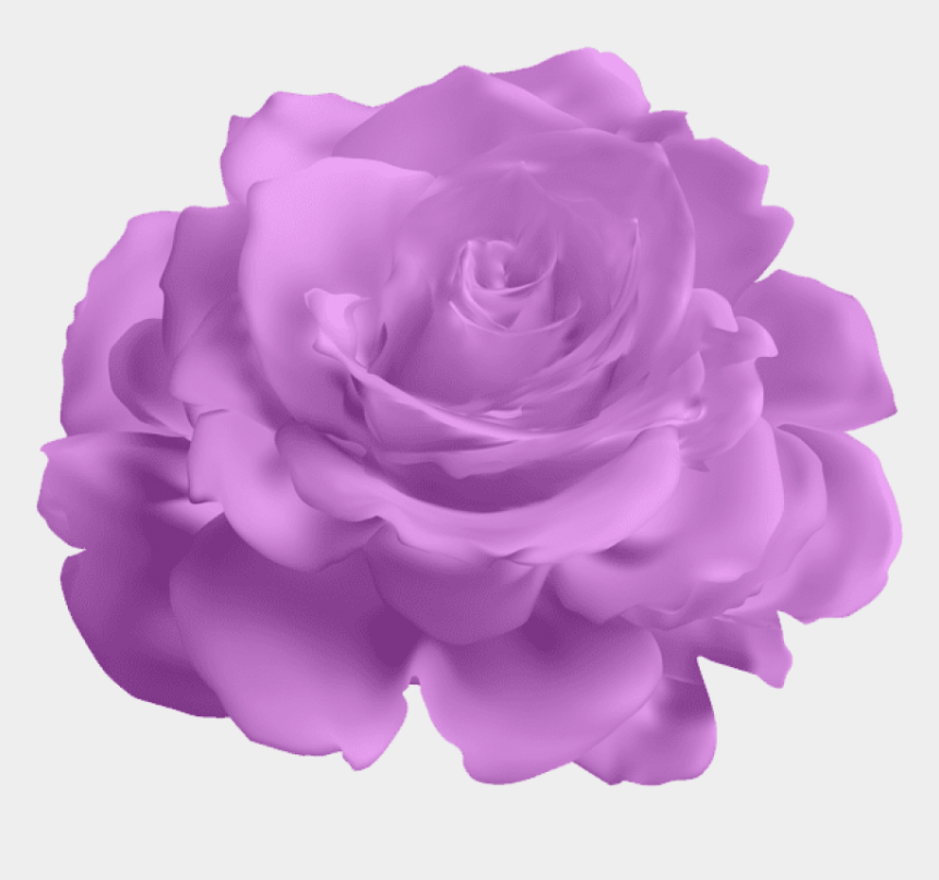 purple roses clipart, Cartoons - Purple Rose Transparent Png Clipart Free Download Ya - Blue Roses Transparent Background