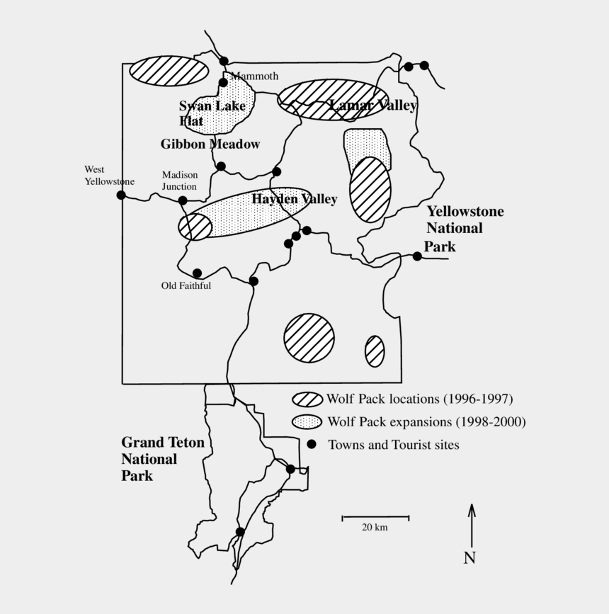 national park clipart, Cartoons - Drawing Roads National Park - Landscape Of Fear Wolf