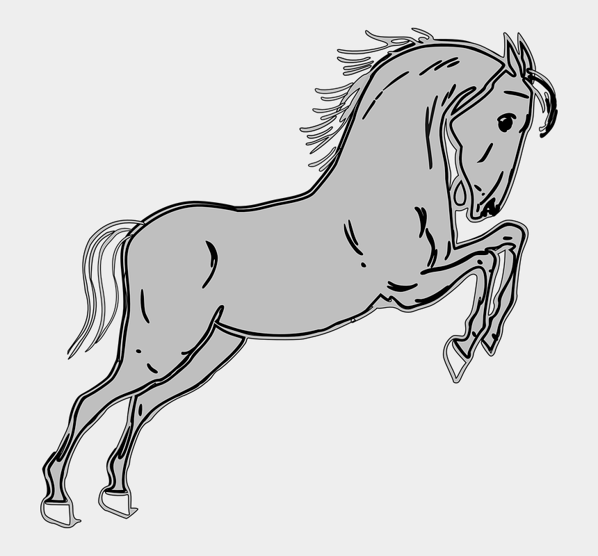 horse jump clipart, Cartoons - Horse, Grey, Jumping, Animal, Strong - Horse Clip Art