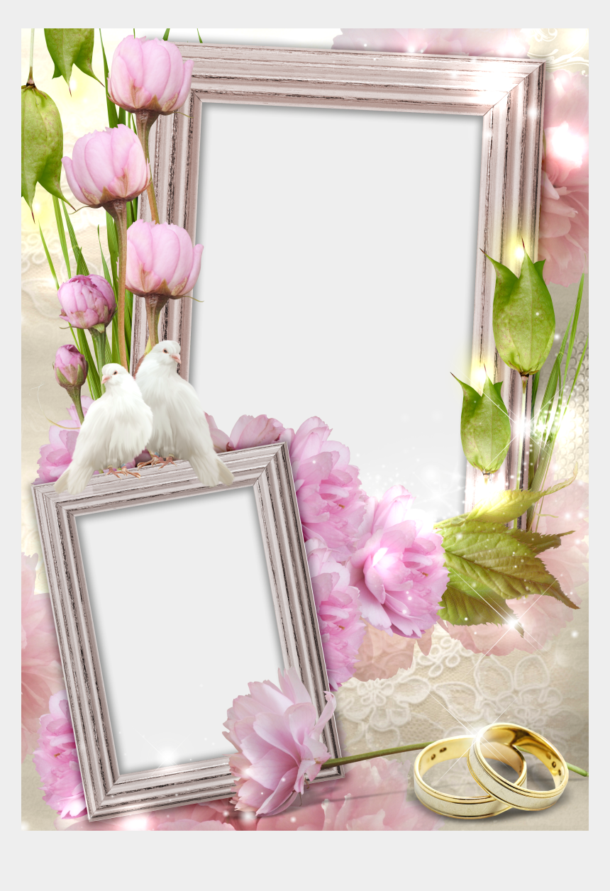 Transparent Wedding Frame With Rings And Doves Wedding