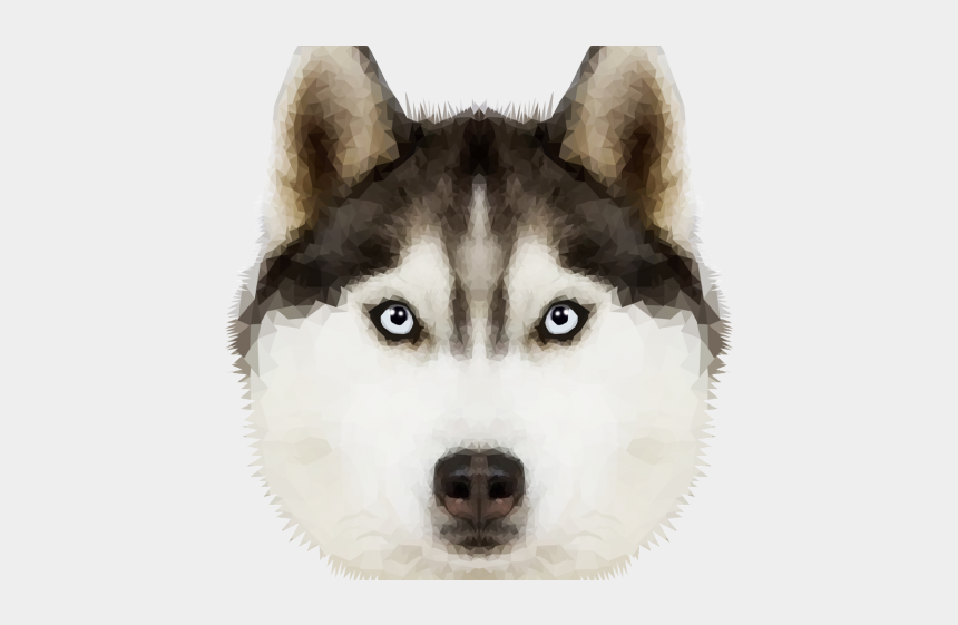 sled dogs clipart, Cartoons - Husky Clipart Transparent Background - Husky Png