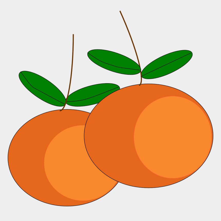 clipart vitamins, Cartoons - Oranges Fruits Citrus Ripe Juicy Vitamins Sweet - Buah Buahan Vektor Png