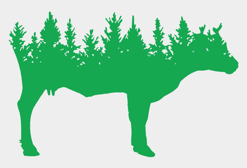 pikes peak silhouette clipart, Cartoons - Spring Forest Farm - Pine Trees Background Vector