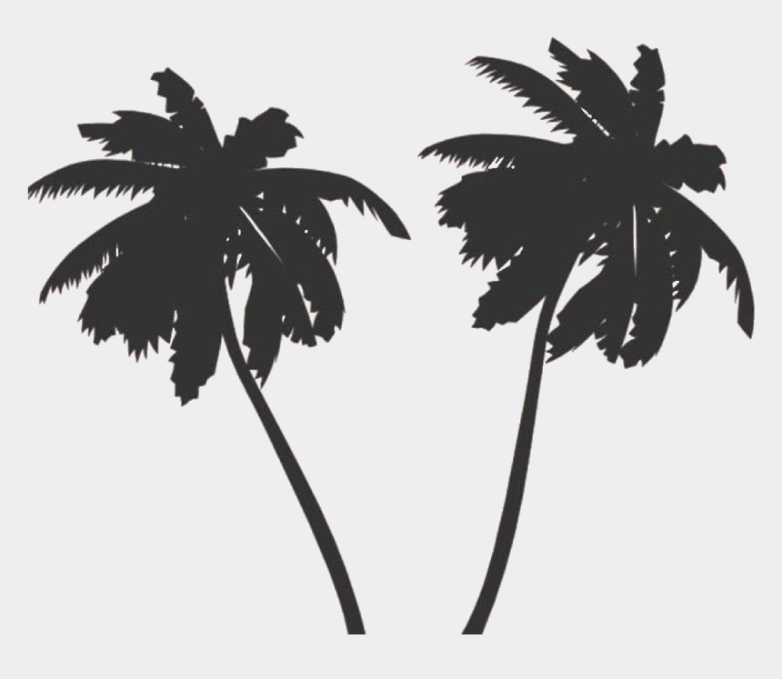 tropical island clipart black and white, Cartoons - #summer #summervibes #palmtree #palmtrees #trees #black - Palm Tree Vector Png
