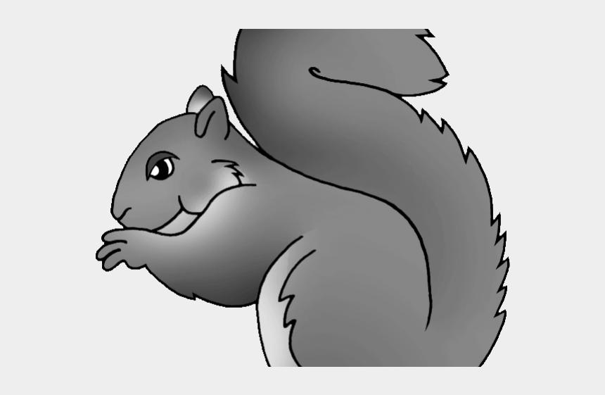 similarity clipart, Cartoons - Gray Squirrel Clipart Squirre - North Carolina Mammal Gray Squirrel