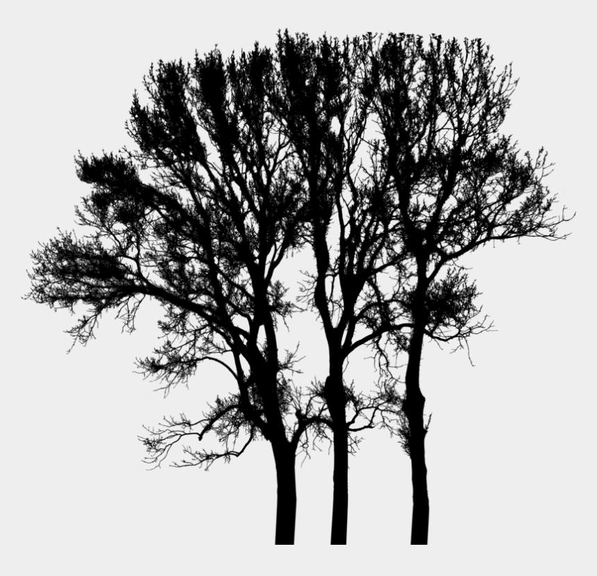 winter tree clipart black and white, Cartoons - Silhouette Black & White - Oak