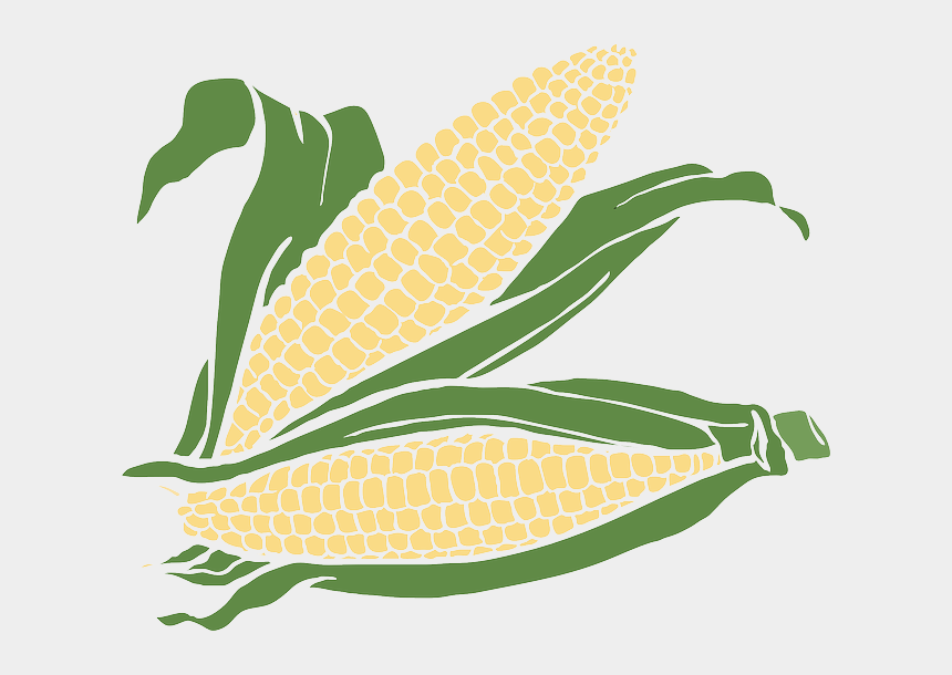 Corn clipart snack, Corn snack Transparent FREE for download on  WebStockReview 2020