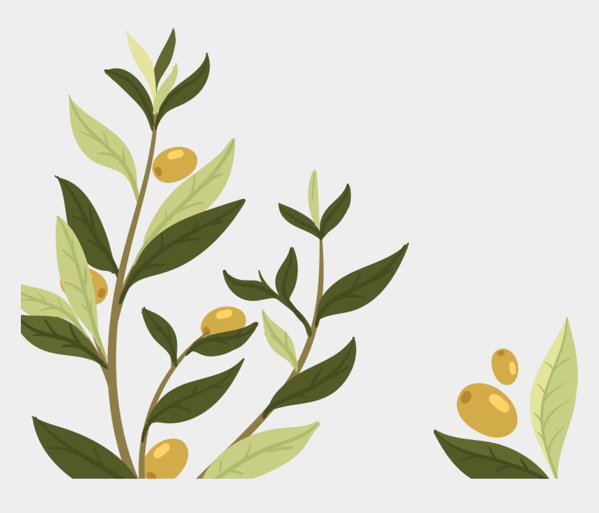 olive leaves clipart, Cartoons - Wedding Invitation Olive Leaf Olive Branch - Nature Republic Ultra Hydrate Olive