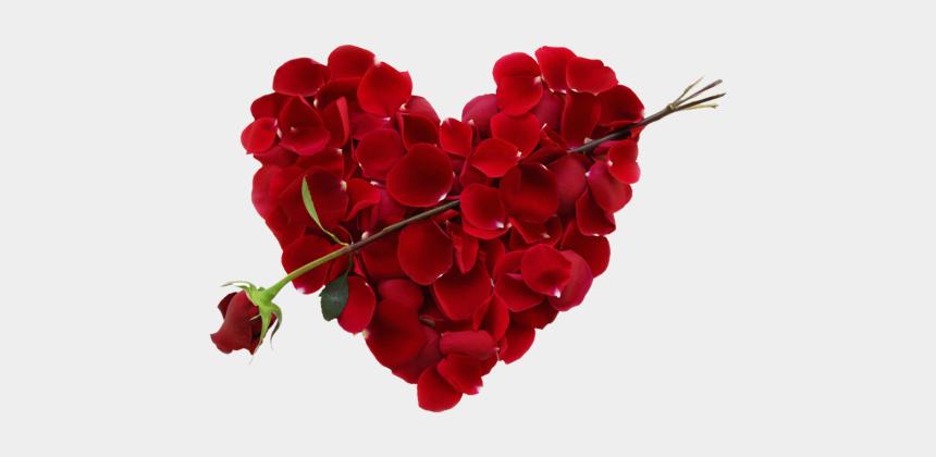 rose heart clipart, Cartoons - Download A Rose Flower