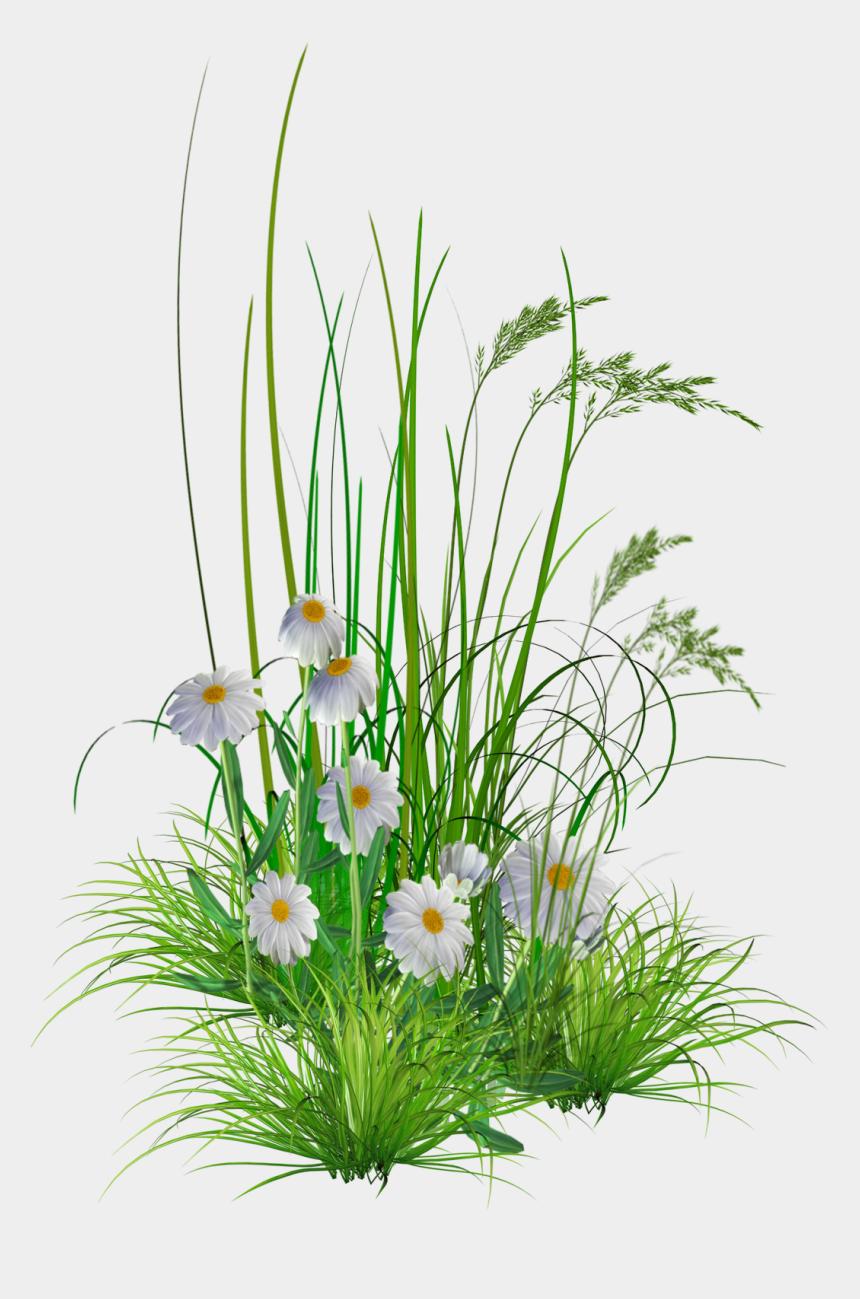 garden flowers clipart, Cartoons - Png Garden Flowers By - Garden Flower Grass Png
