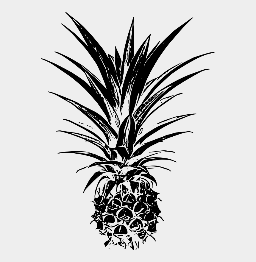 pineapple clipart black and white, Cartoons - Palm Trees Pineapple Email Remix Leaf - Palm Tree Beach Clipart Black And White