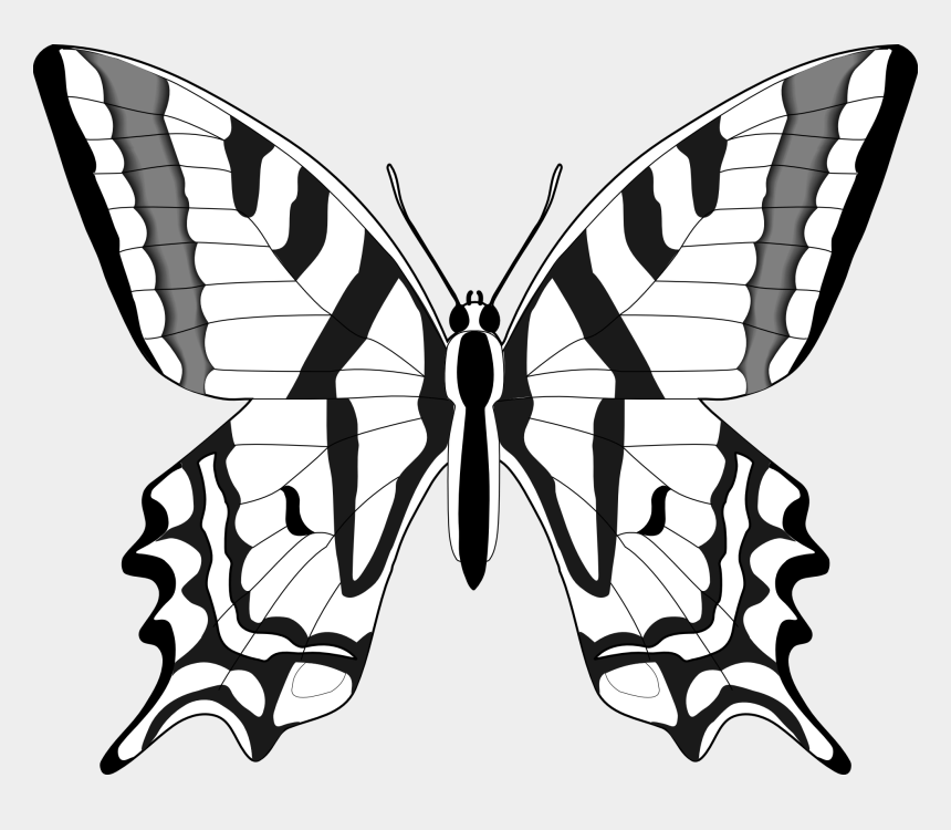 grinch clipart, Cartoons - Butterflies Black And White