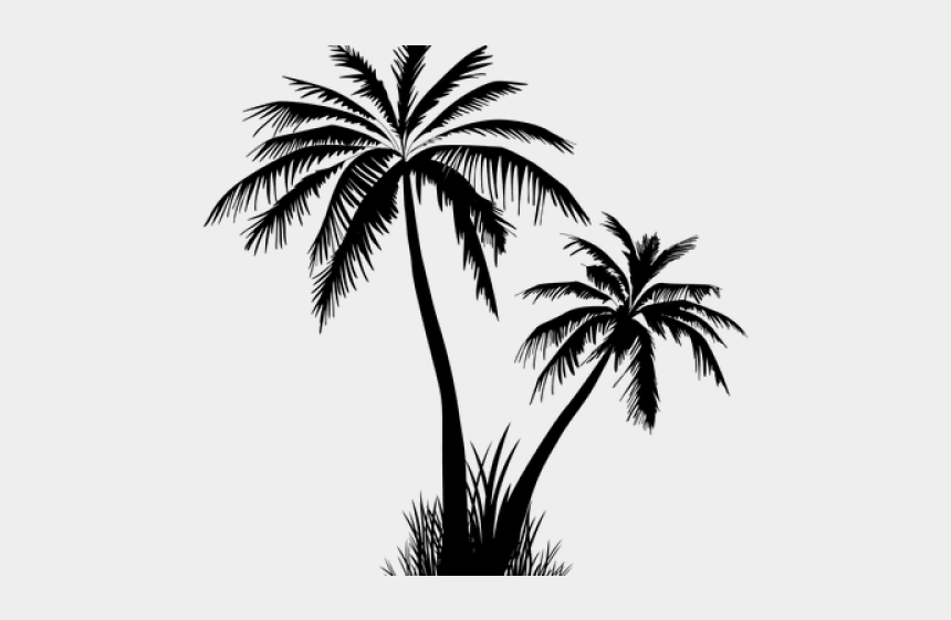 palm tree silhouette clipart no background, Cartoons - Date Palm Clipart Transparent Background - Palm Tree Silhouette Transparent