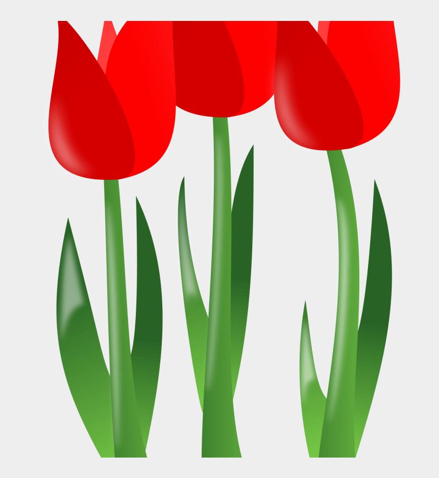 vegetable garden border clipart, Cartoons - Spring Borders Clipart Free Download Best Spring Borders - Mothers Day Flower Transparent Png
