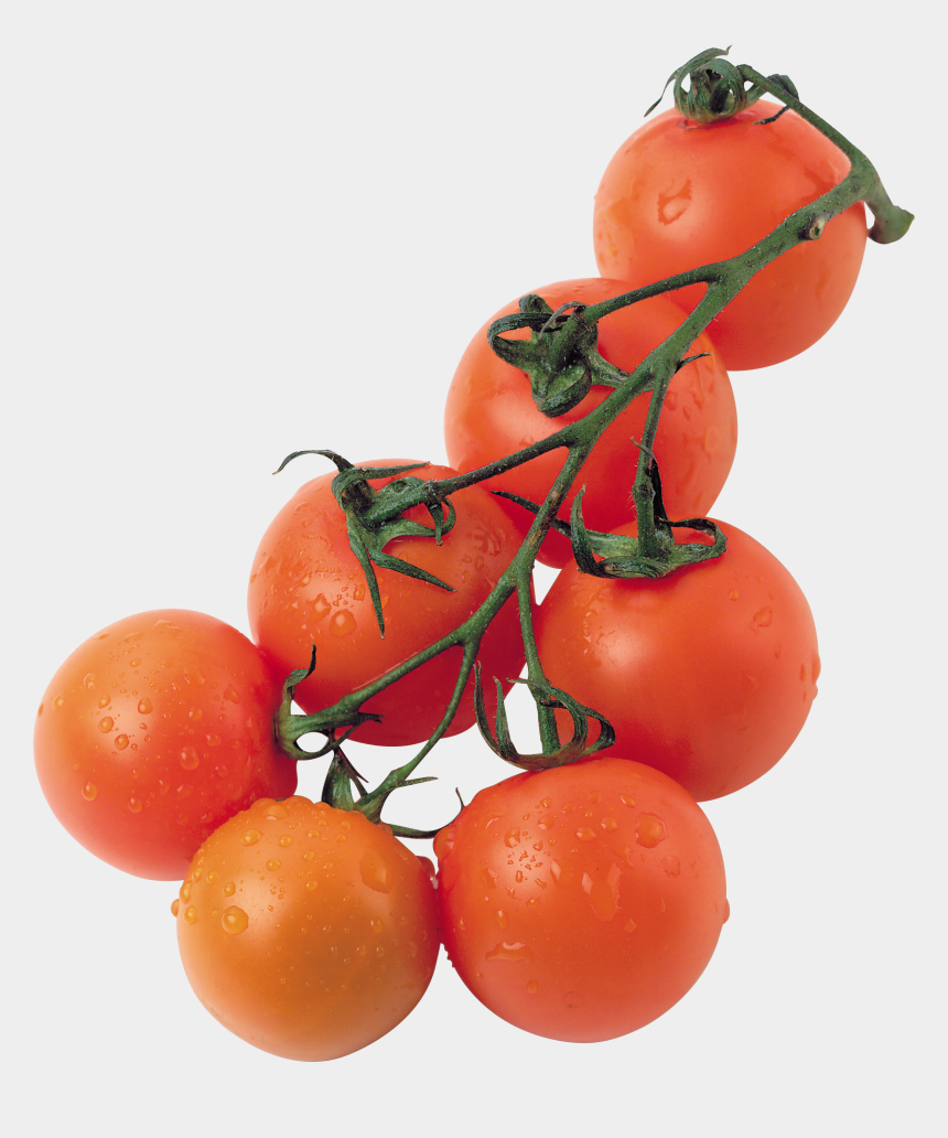 tomato plants clipart, Cartoons - Red Tomatoes - Помидоры Рассада Png
