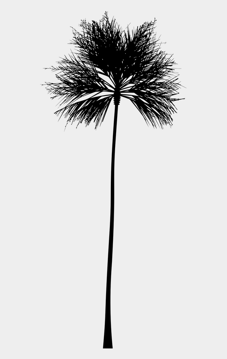 tropical clipart black and white, Cartoons - Tropical Vector Black And White - California Palm Tree Icon