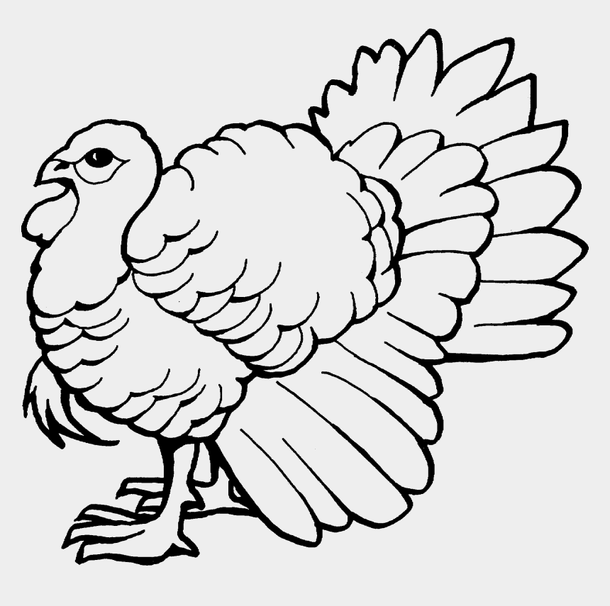 wild turkey clipart black and white, Cartoons - The Big Wild Turkey Coloring Pages - Easy Wild Turkey Drawings