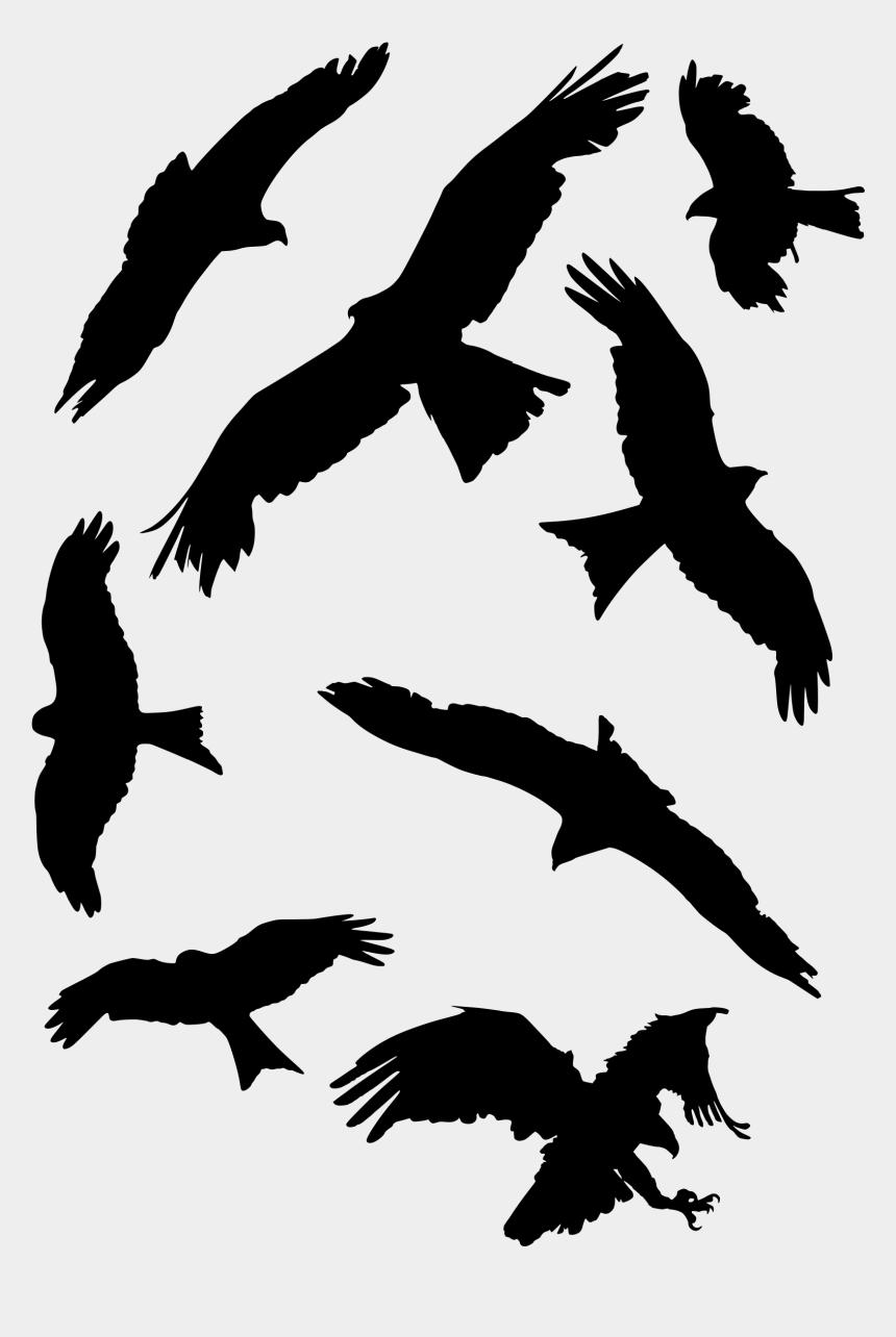 falcon bird clipart, Cartoons - Bird Set Free Falcon Bird Of Prey Beak - Bird Silhouette Eagle