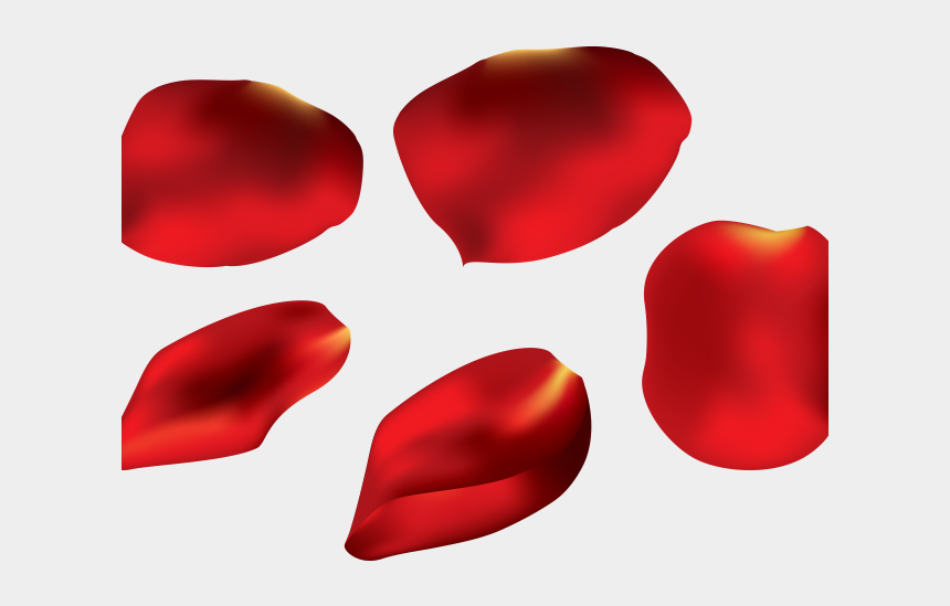 flower petal outline clipart, Cartoons - Petal Clipart Flower Pedal - Rose Petal Transparent Background