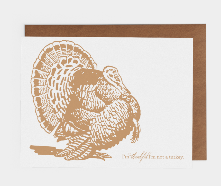 ruffed grouse clipart, Cartoons - I'm Thankful I'm Not A Turkey - Wild Turkey Turkey Clipart Black And White