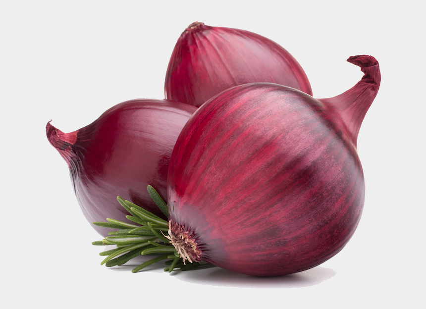 Onion Png Black And White & Free Onion Black And White.png Transparent  Images #10662 - PNGio