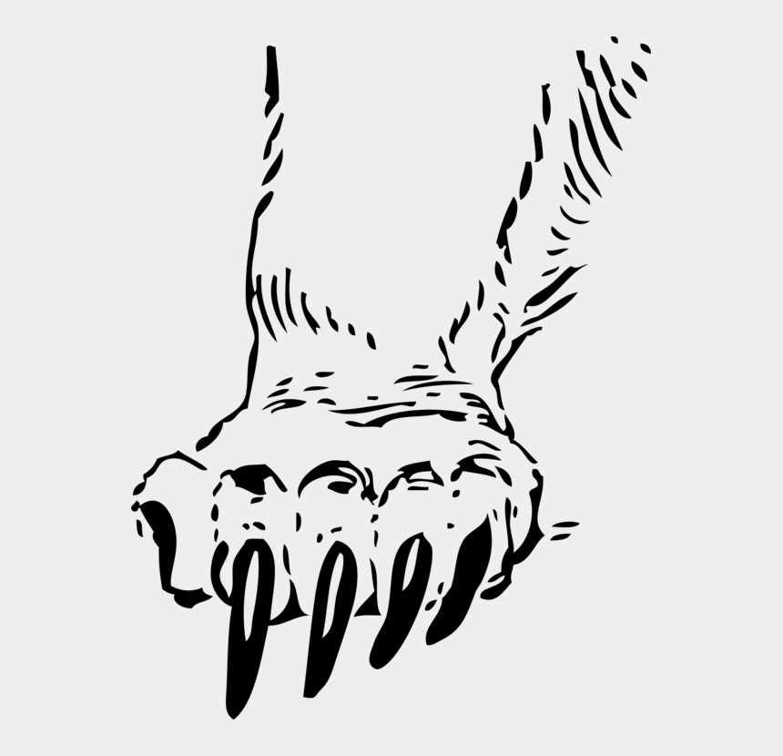 tiger paw clipart black and white, Cartoons - Tigers Drawing Paw - Claws Clipart