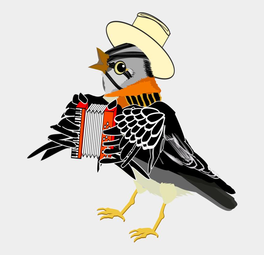 watercolor bird clipart, Cartoons - Bird Accordion Music Watercolor Painting - Bird That Plays The Accordion