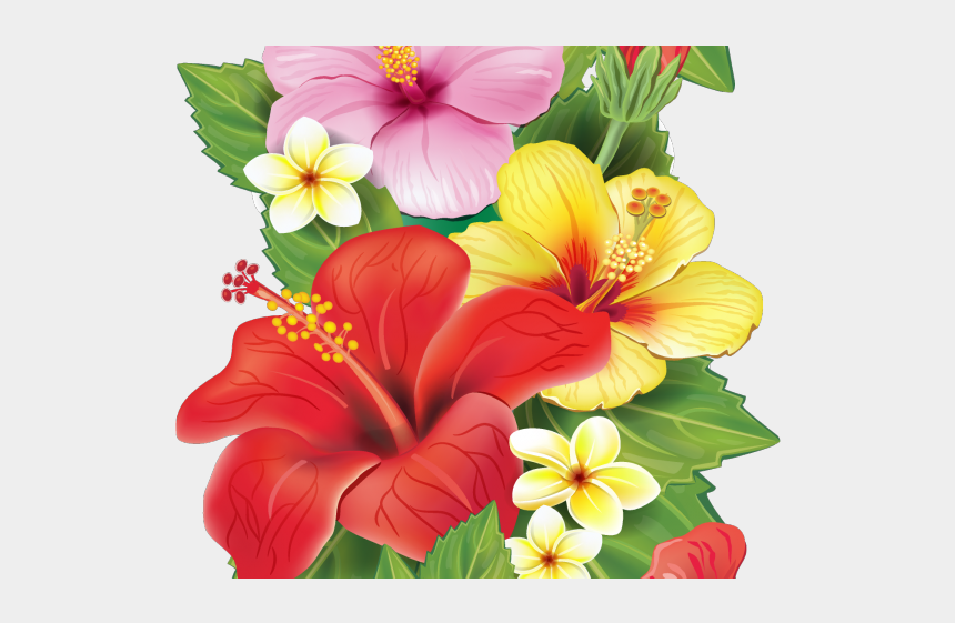 moana clipart, Cartoons - Red Flower Clipart Moana - Transparent Background Tropical Flowers Clipart