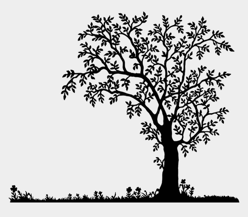 oak tree clipart, Cartoons - Oak Tree Silhouette, Landscape Silhouette, Old Trees, - Tree Clipart Black And White Png