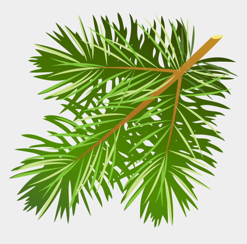 pine cone clip art, Cartoons - Pine Tree Clipart - Pine Tree Leaves Free