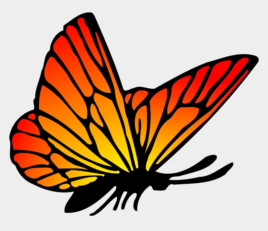 butterflies clipart, Cartoons - Butterflies Clip Art Free , Png Download - Drawing Monarch Butterfly