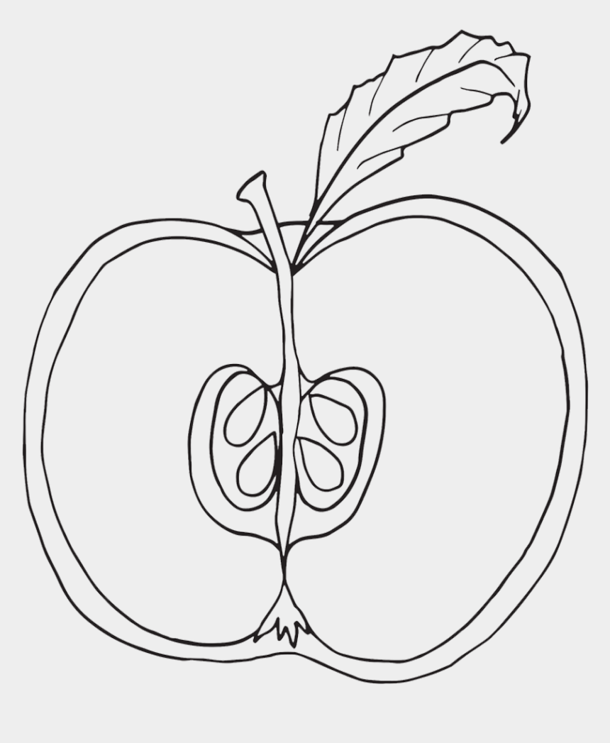 apple clipart black and white, Cartoons - Parts Of An Apple Coloring Pages, Nomenclature Cards, - Parts Of An Apple Coloring