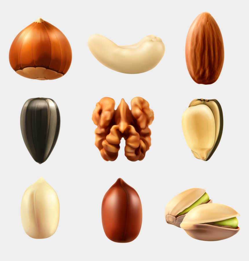 peanut clipart, Cartoons - Nuts Collection Png Clipar Image Gallery Yopriceville - Nuts Png