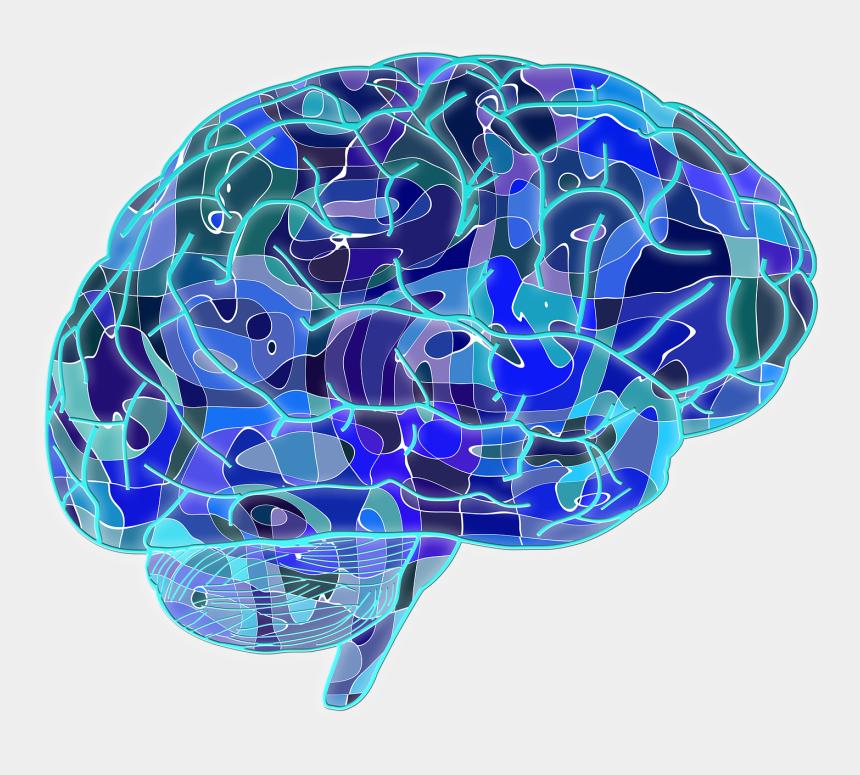 free clipart of a brain, Cartoons - Brain Png Transparent Images - Psychology Brain Transparent