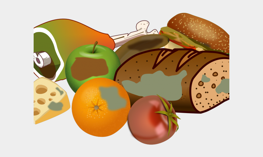 clipart foods, Cartoons - Decay Clipart Mouldy Food - Rotten Food Clipart No Background