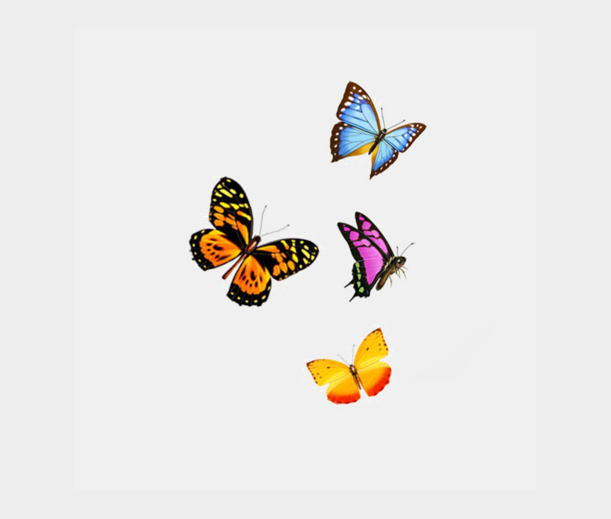 flying butterflies clipart, Cartoons - Flying Butterfly Png Image Background - Transparent Background Flying Butterfly Png
