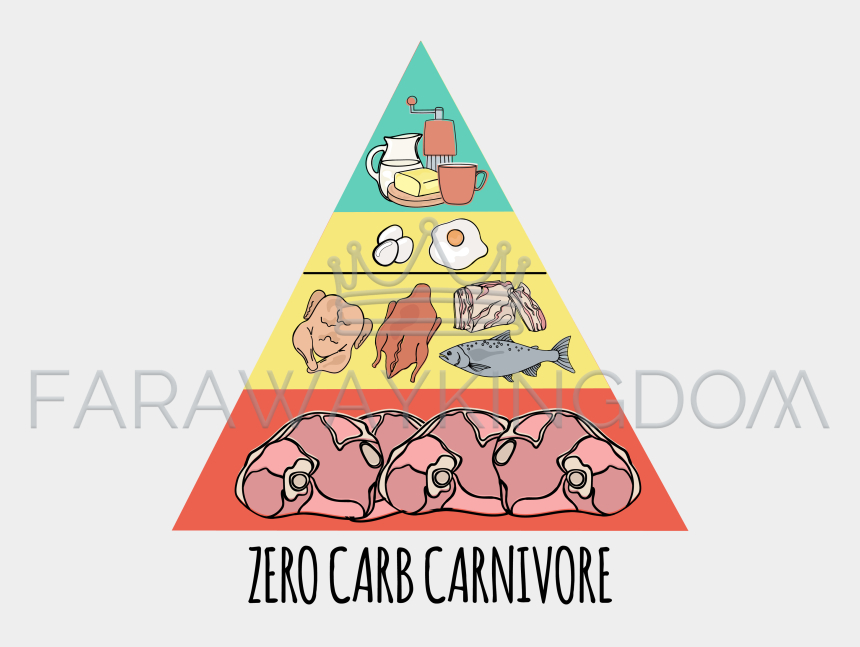 Carnivore Pyramid Organic Healthy Food Vector Illustration Food Cliparts Cartoons Jing Fm