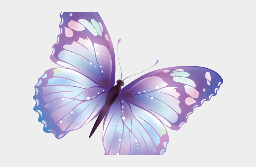 purple butterfly border clipart, Cartoons - Butterfly Design Clipart Colorful Flying Butterfly - Pink Butterfly No Background