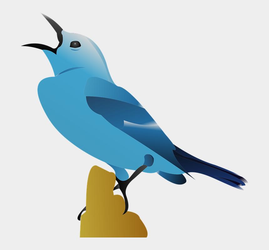 bird vector design nature burung png cliparts cartoons jing fm vector design nature burung png